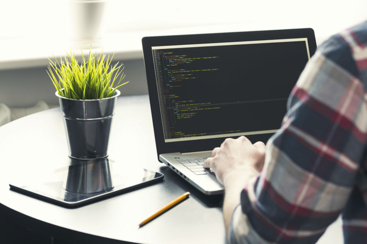 hombre computadora programador software trabajo maceta