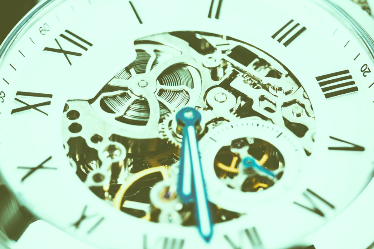 reloj mecanismo engrane manecilla tiempo esqueleto