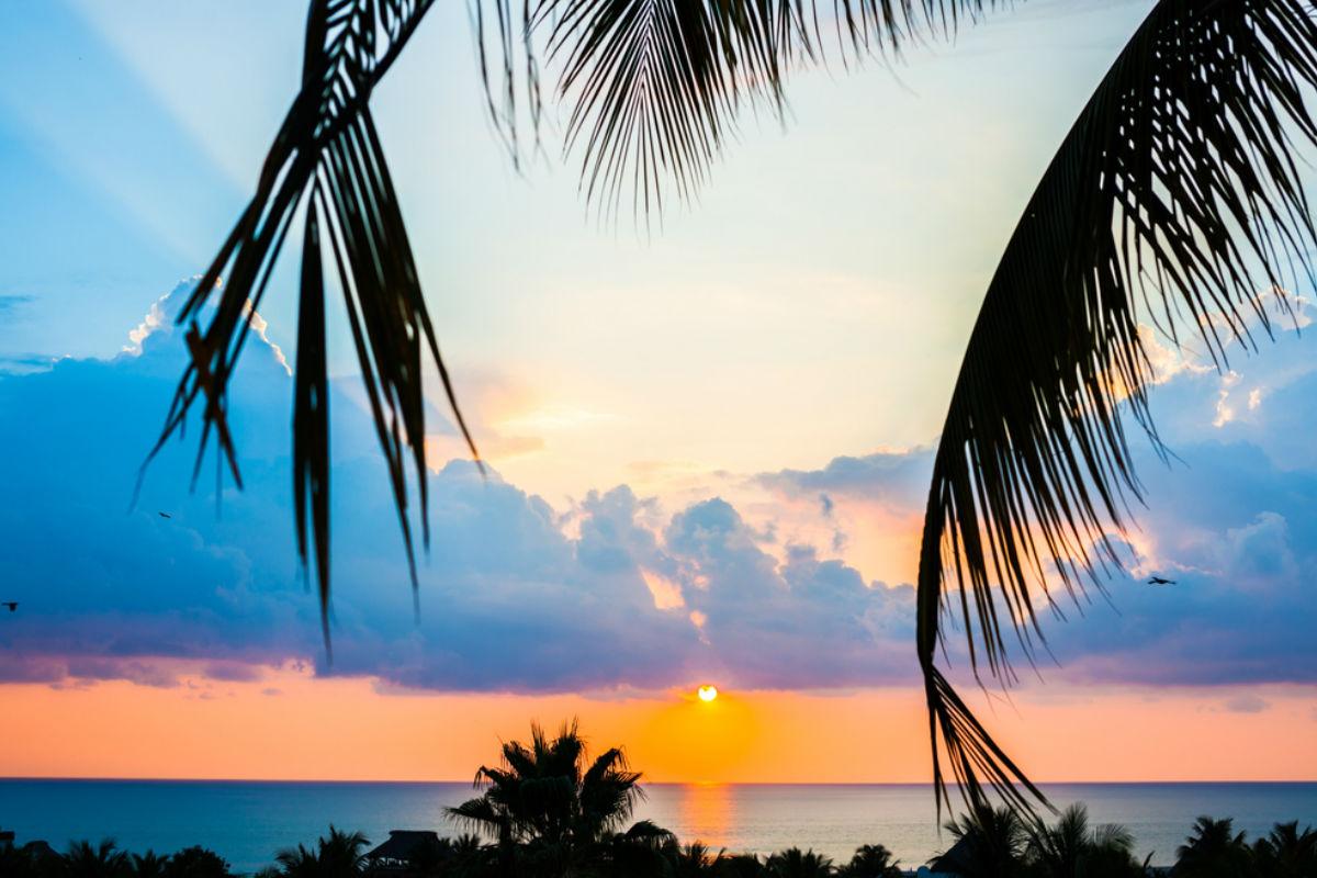 playa atardecer palmera mar vacaciones puerto escondido oaxaca