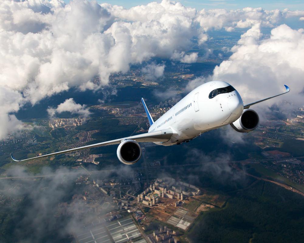 aerolínea-viajar-perro-vuelo
