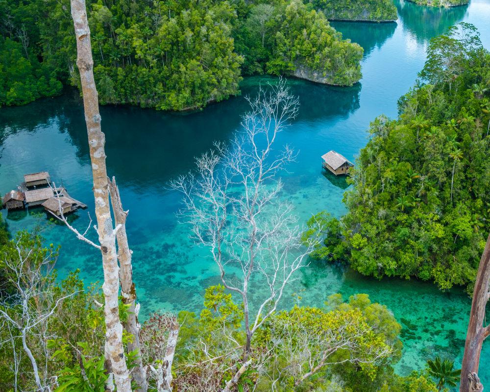 Por qu la isla sentinel es la ms peligrosa del mundo descubre por qu esta isla es considerada la ms peligrosa del mundo altavistaventures Choice Image