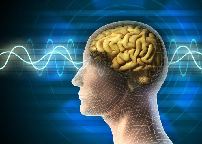 cerebro contaminación electromagnética