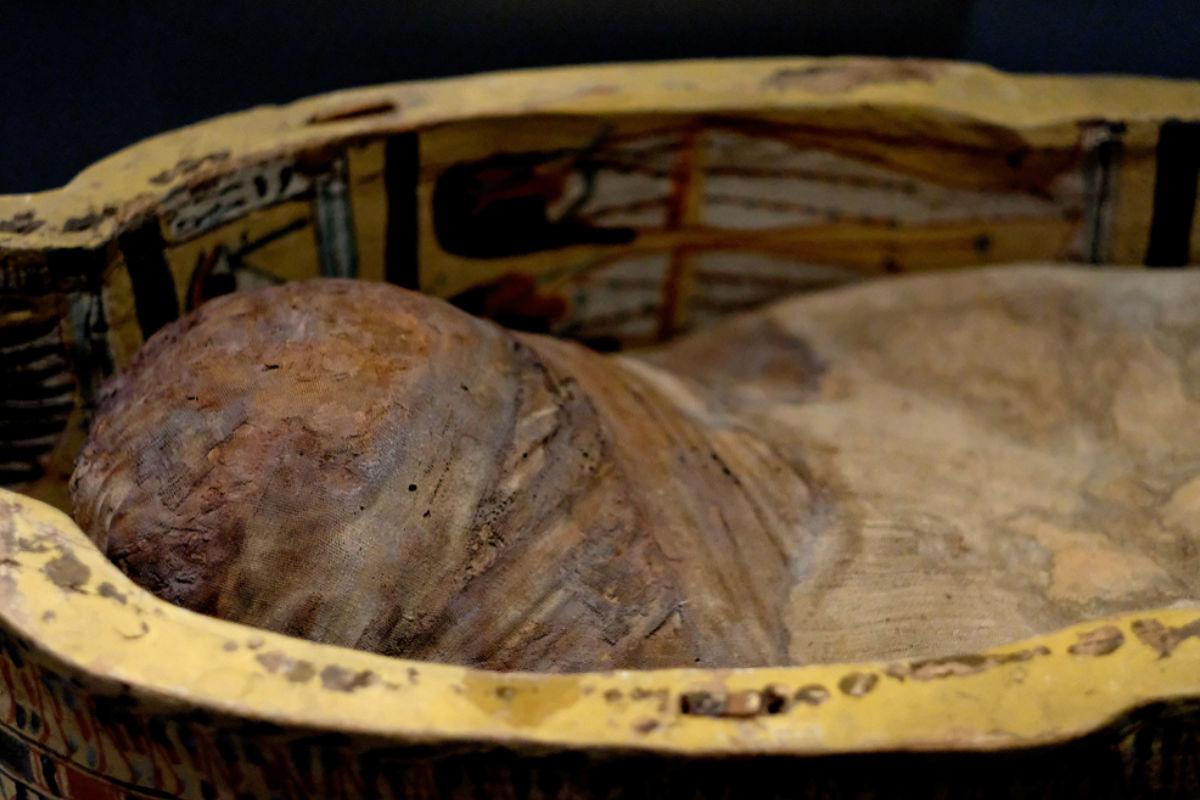 encuentran-momia-forma-alienigena