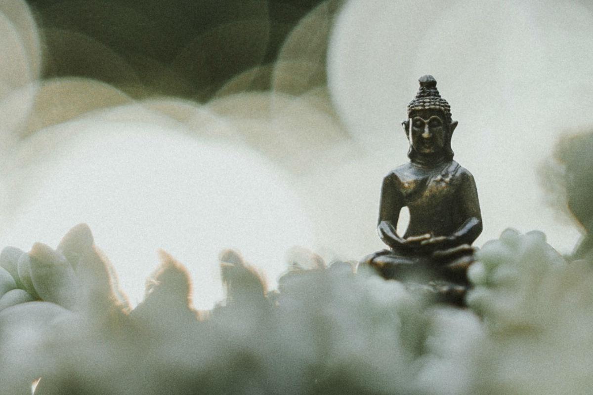decalogo-zen